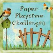 Paper PlaytIme Challenges