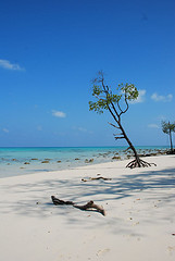 Unspoilt Radha Nagar Beach, Havelock
