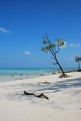 Unspoilt Radha Nagar Beach, Havelock