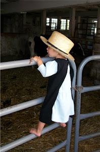 Amish peuter