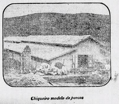 MATADOURO DE BARBACENA