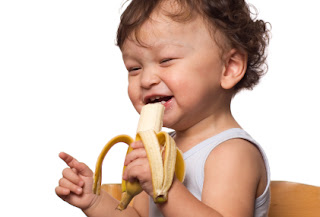 Nutrition and early brain development from Brain Insights