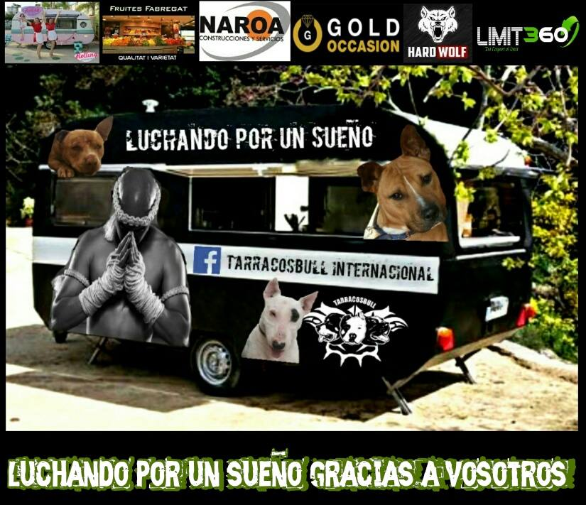 ESTE BLOG COLABORA CON TERRACOSBULL INTERNATIONAL/ accede aqui a su facebook y ayùdanos!!