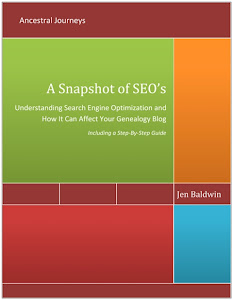 eBook: A Snapshot of SEO's