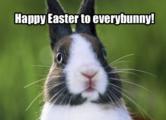 Funny Happy Easter Pictures Funny easter bunny meme