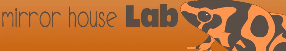 Mirror House Lab