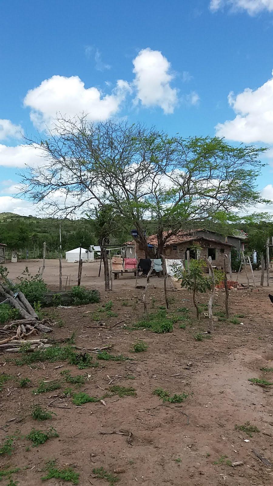 Sertão da Bahia