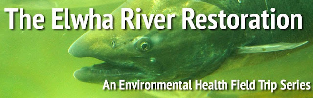 A Trip to the Elwha: Part 2, A River Restored
