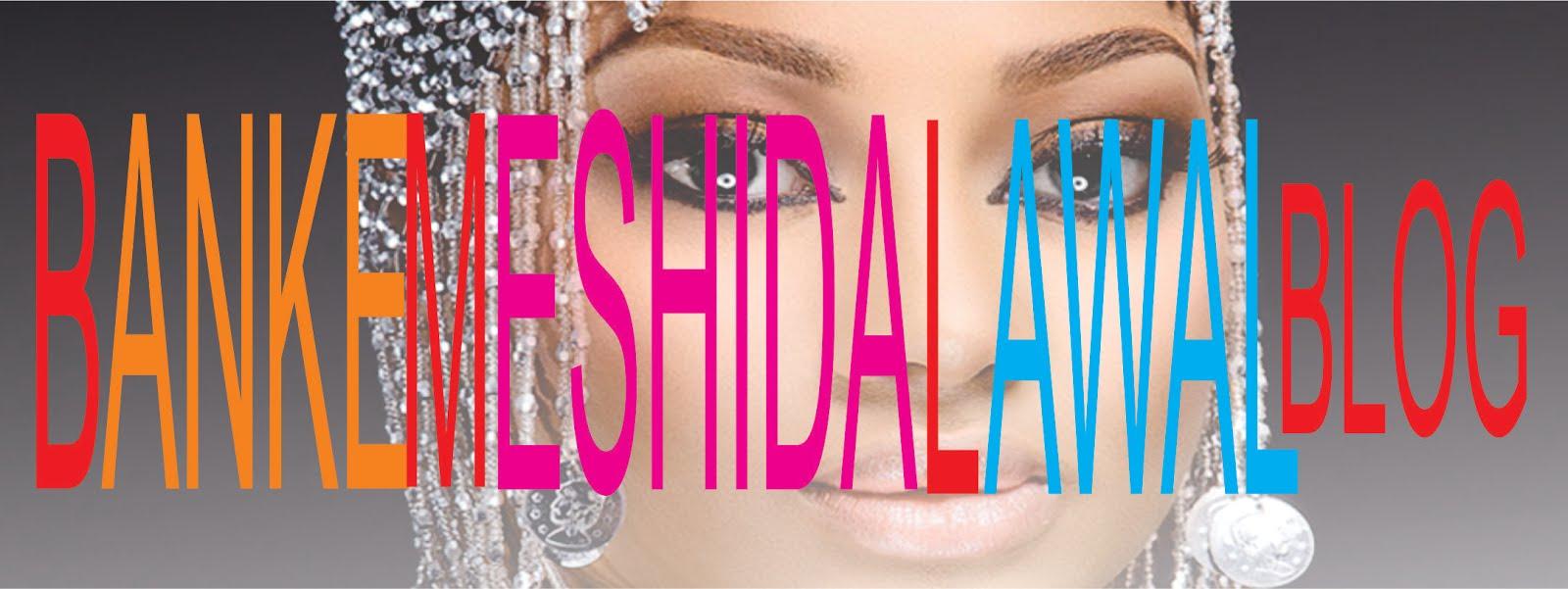 Banke Meshida Lawal Blog