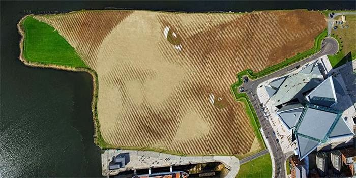 Artist creates huge 11-Acre portrait of child