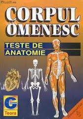 Teste  anatomie