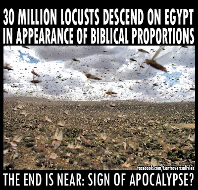 30 Million Locusts