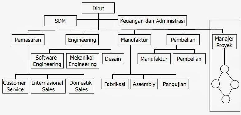 Contoh Organisasi berbasis proyek