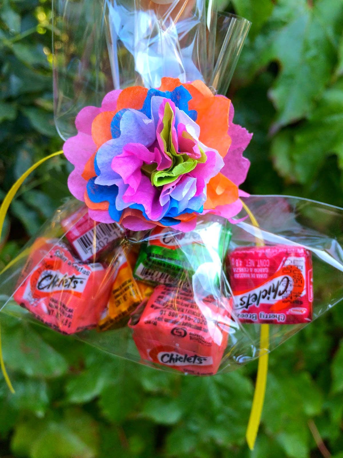 Jac O Lyn Murphy Simple Cinco De Mayo Party Favors