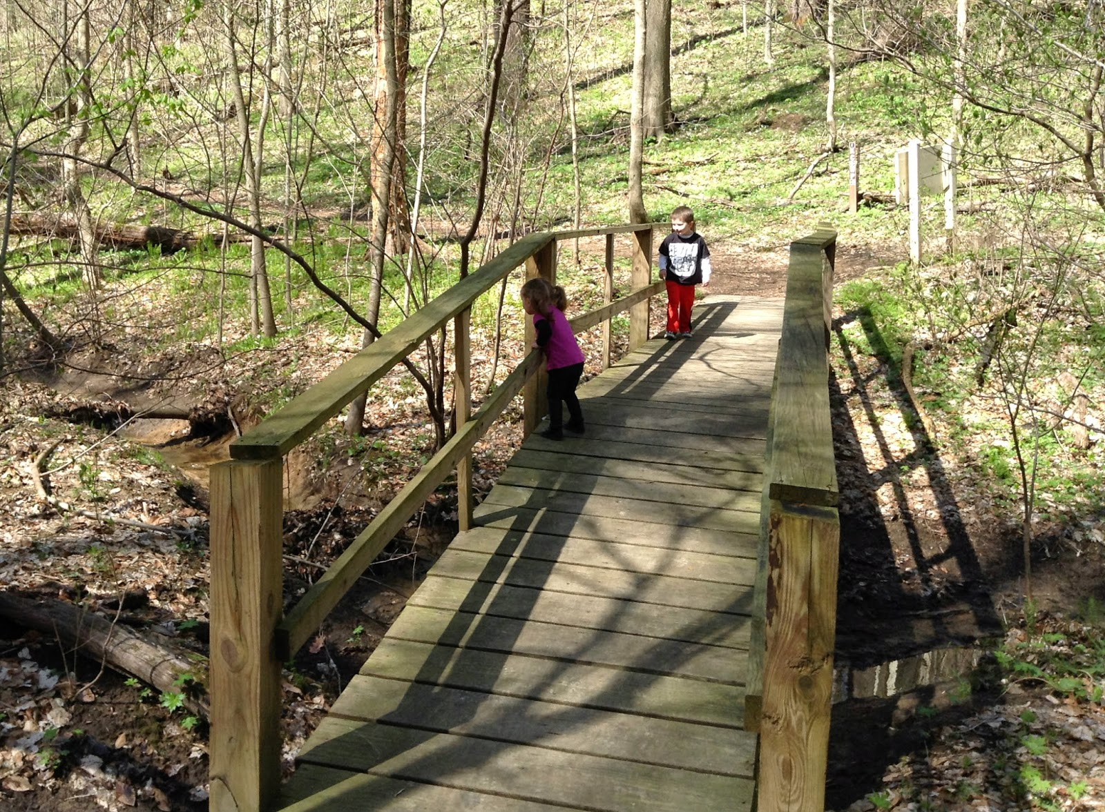 7 Reasons To Take Your Kids Hiking!