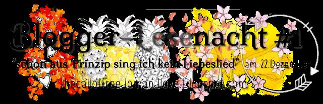 http://thecalloffreedomandlove.blogspot.de/2015/12/bloggernacht-die-erste-update-post.html