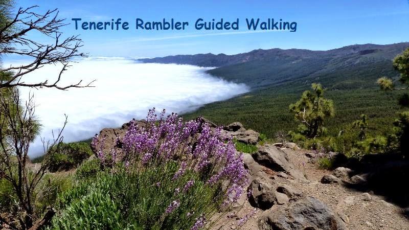Tenerife Rambler Guided Walking