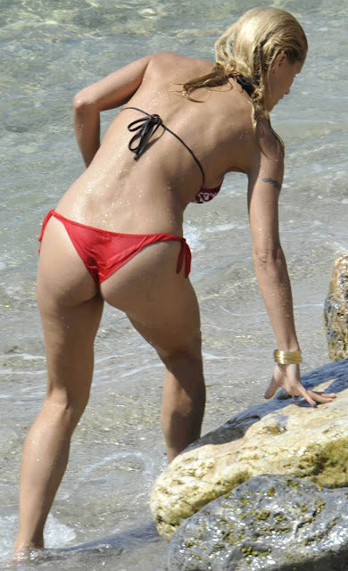 Filthy Anarchists Phlog: Michelle Hunziker bikini creeps