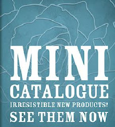 The Mini Catalogue 2011