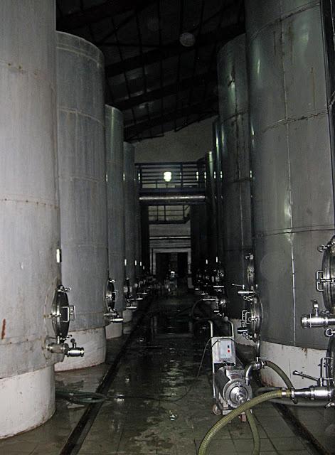 grape juice fermentation