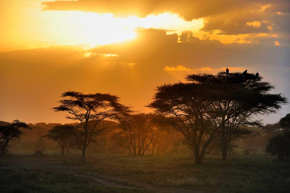 Africa moments in kenya