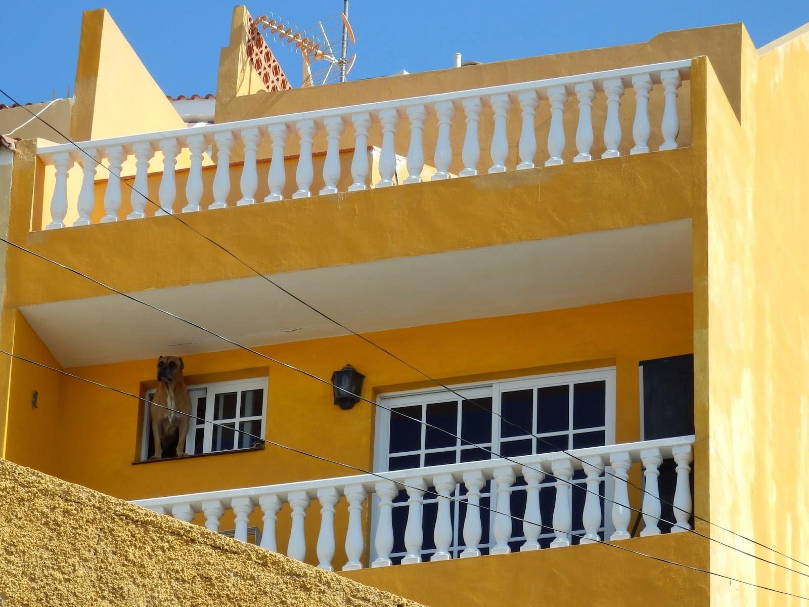 Tenerife houses