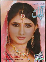 Aanchal Digest May 2011 pdf
