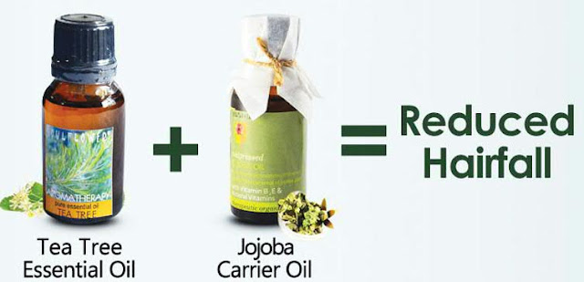 Tea Tree Essential Oil and Jojoba Carrier Oil to Reduce Hair Fall
