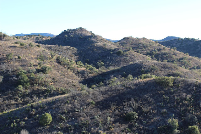 Hunting%2Bin%2BSonora%2BMexico%2Bfor%2Bcoues%2Bdeer%2Bwith%2BColburn%2Band%2BScott%2BOutfitters%2B4.JPG