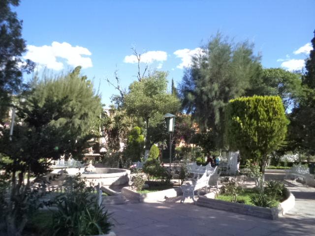 Un traguito de jerez jardin principal rafael p ez for Jardin principal