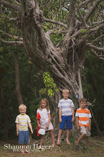 Shannon Hager Photography, Comprehensive Park, Okinawa, Spooky Tree