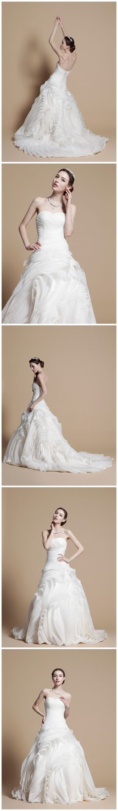 Ladies wedding dresses and photo poses