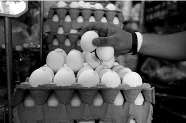 El mexiquense hoy edomex segundo lugar en consumo de for Huevo en el ano