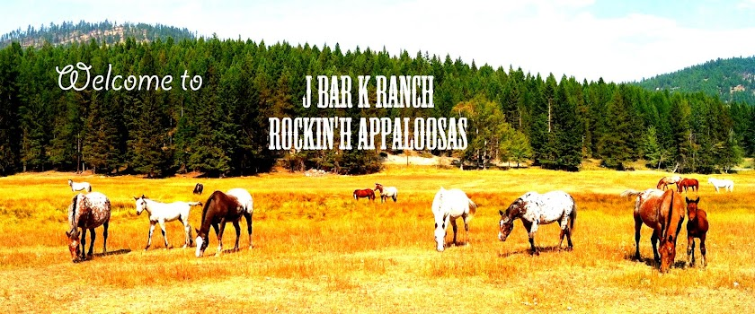 Welcome to J bar K Horse Ranch Rockin' H Appaloosas