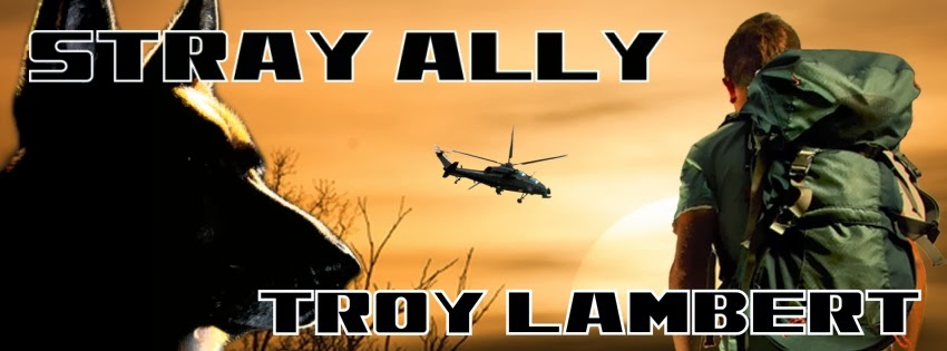 http://www.tirgearrpublishing.com/authors/Lambert_Troy/stray-ally.htm