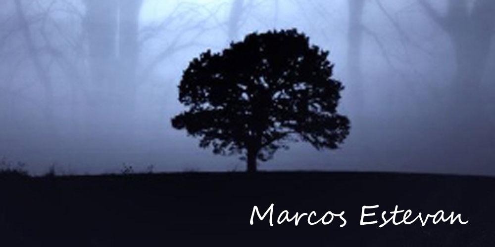 Marcos Estevan Franco