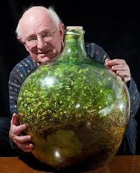 Tanaman Hidup Dalam Botol Walaupun Terbiar Selama 40 Tahun