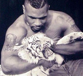 mike tyson pet tigers