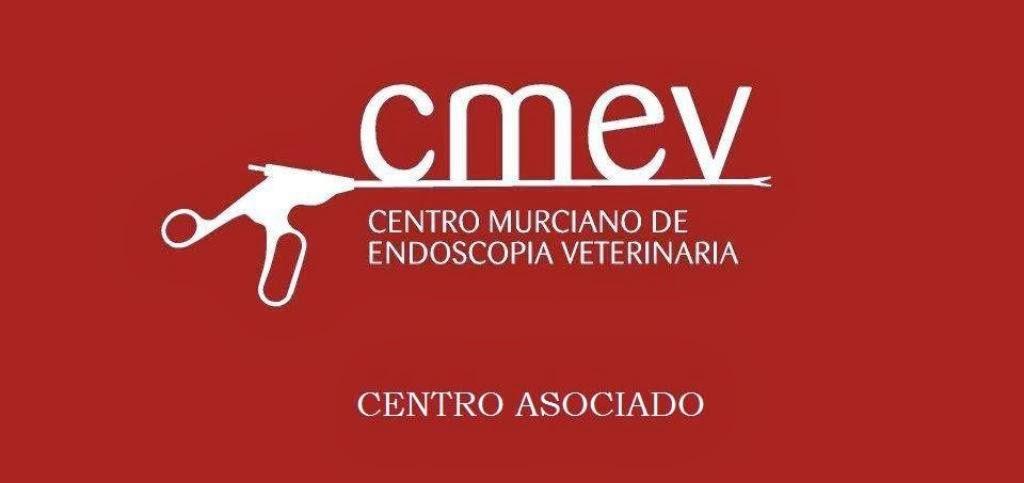 Miembro del CMEV