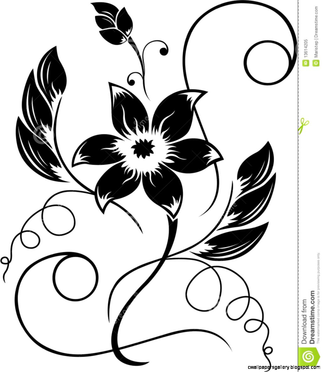 drawings flowers black white   Flowers Picture