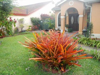 gambar taman indah didepan rumah