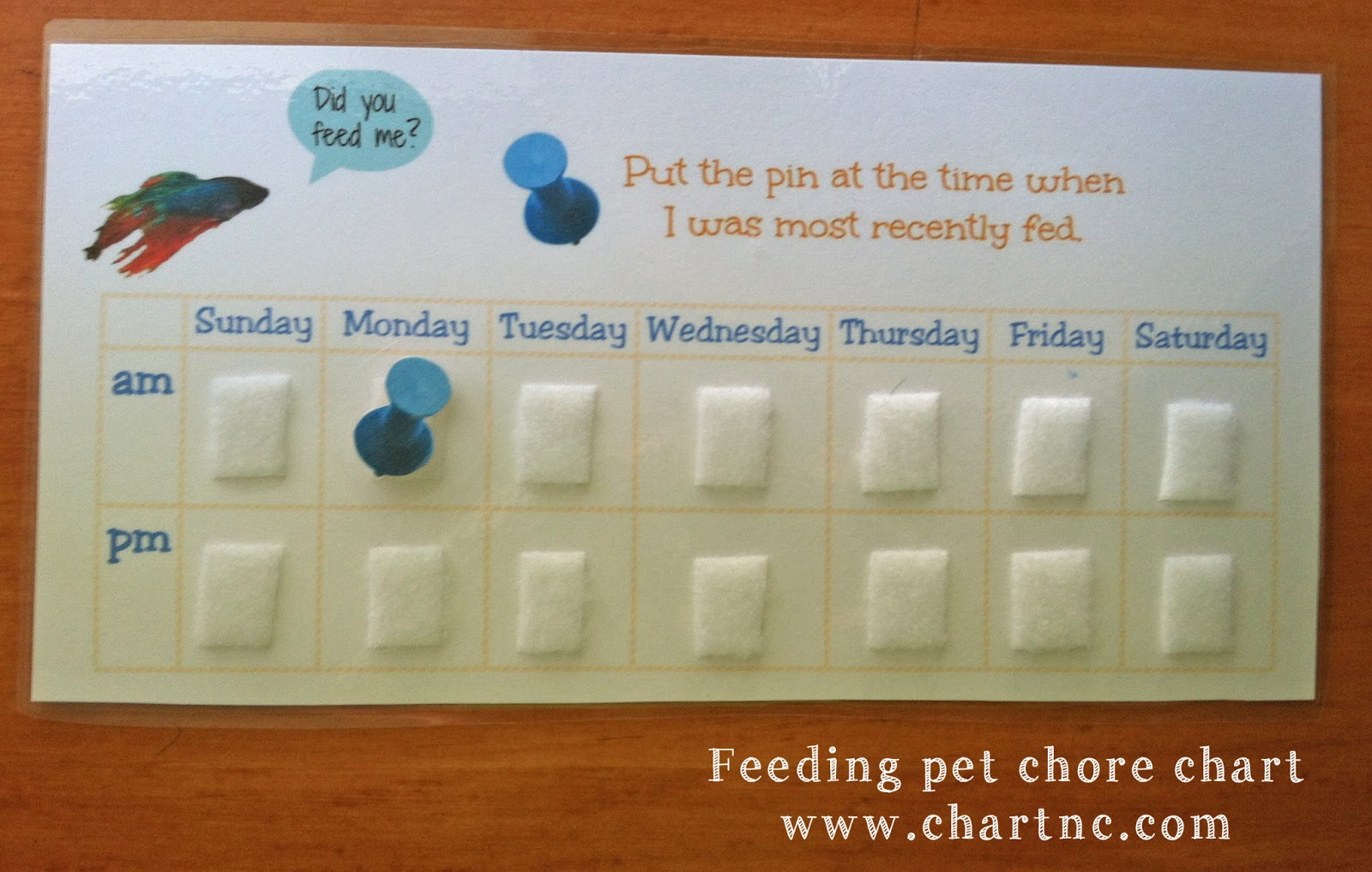 Chart chapel hill autism resources and tools teaching for Fish feeding chart