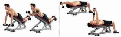 Prone Incline Curl
