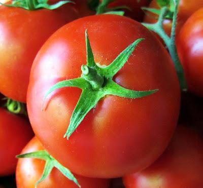manfaat kandungan nutrisi pada buah tomat