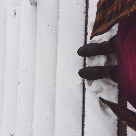 Wisconsin Snow