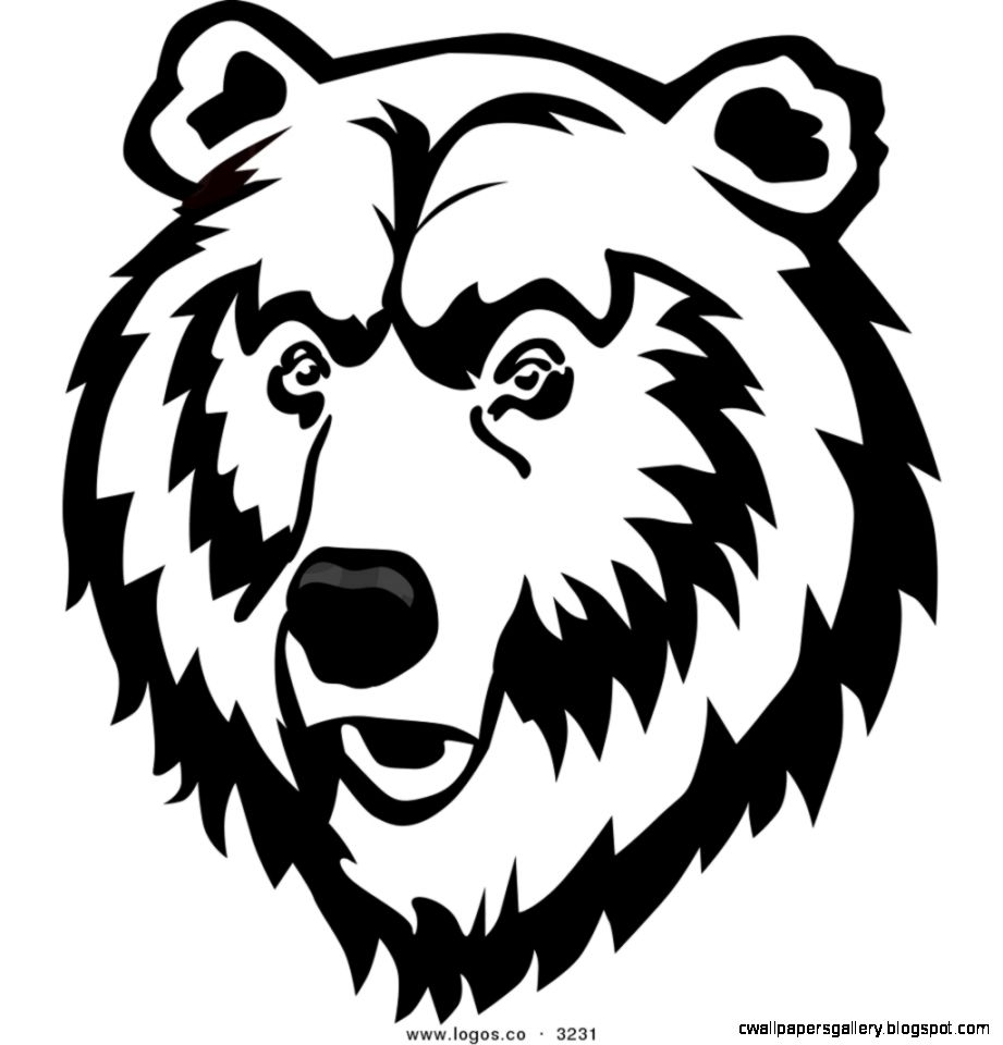 Bear Face Drawing | Wallpapers Gallery Bear Face Drawing