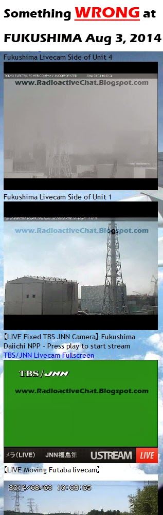 Airborne Radiation, FUKUSHIMA, Live Cam, Radiation Sickness, Reactor 4, Reactor Units, Spent Nuclear Fuel Pool, Steam, Nuclear Fallout, Live Cam, Disaster, Extreme Radiation, Run Away