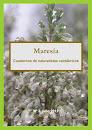 Maresía 3