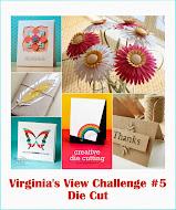 Virginia's View Challenge #5