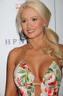 Holly Madison breast insurance
